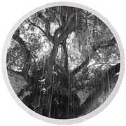 The Tree Vines Round Beach Towel