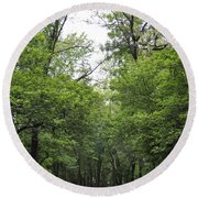 The Trees Of Illinois Round Beach Towel