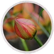 The Tulip Bud Round Beach Towel