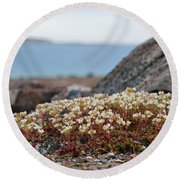 The Tundra... Round Beach Towel