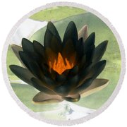 The Water Lilies Collection - Photopower 1037 Round Beach Towel