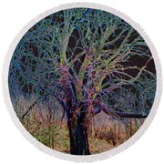 10994 The Widow Tree Round Beach Towel