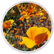 The Wildflowers Are Here And Spring Has Arrived Round Beach Towel