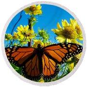 The Wonderful Monarch 3 Round Beach Towel