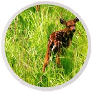 The Young Prince Round Beach Towel