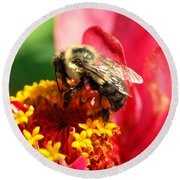 The Zinnia And The Bee Round Beach Towel
