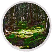 Thicket-like Woods And Spongy Moss Near Lobster Cove In Gros Mor Round Beach Towel