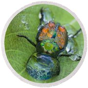 Thirsty Beetle Round Beach Towel