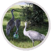 Thirsty Cranes Round Beach Towel