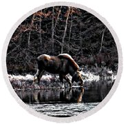 Thirsty Moose Impressionistic Digital Painting Round Beach Towel