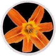 This Orange Lily Round Beach Towel