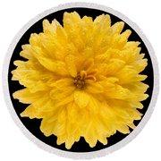 This Yellow Chrysanthemum Round Beach Towel