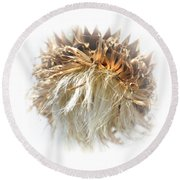 Thistle Abstract 14-1 Round Beach Towel
