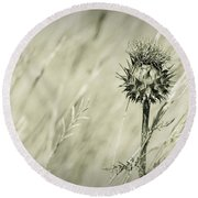 Thistle - Dreamers Garden Series Round Beach Towel