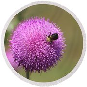 Thistle And A Bee Round Beach Towel