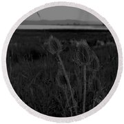 Thistles At Ninepipes Round Beach Towel