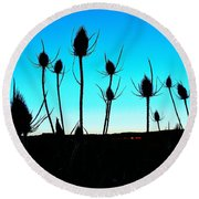 Thistles At Sunset Round Beach Towel