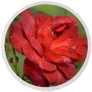 Thorny Red Rose Round Beach Towel