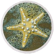 Thorny Starfish Round Beach Towel