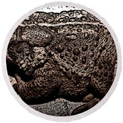 Thoughtful Toad Round Beach Towel