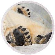 Three Bear Paws Round Beach Towel
