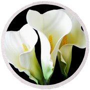 Three Calla Lilies On Black Round Beach Towel