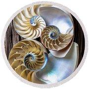 Three Chambered Nautilus Round Beach Towel by Garry Gay