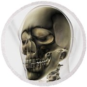 Three Dimensional View Of Human Skull Round Beach Towel by Stocktrek Images