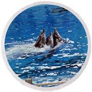 Three Dolphins Round Beach Towel