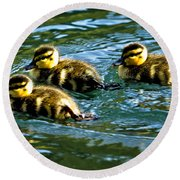 Three Ducklings Round Beach Towel