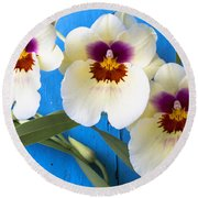 Three Exotic Orchids Round Beach Towel