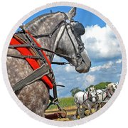 Three Horses Round Beach Towel