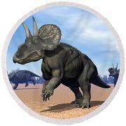 Three Nedoceratops In The Desert Round Beach Towel
