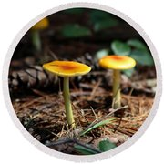 Three Orange Mushrooms Round Beach Towel