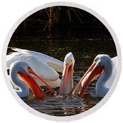 Three Pelicans And A Fish Round Beach Towel