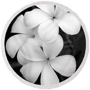 Three Plumeria Flowers In Black And White Round Beach Towel