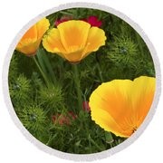 Three Poppies Round Beach Towel