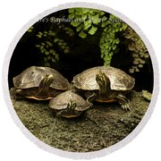 Three Turtles Round Beach Towel