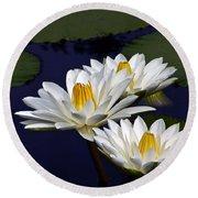 Three White Tropical Water Lilies Version 2 Round Beach Towel