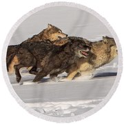 Three Wolves Round Beach Towel