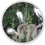Three Wood Storks Round Beach Towel
