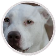 Through The Eyes Of A Pitbull II  Round Beach Towel