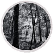 Through The Trees In Black And White Round Beach Towel