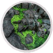 Thunder Hole Algae Round Beach Towel