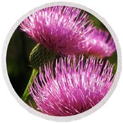 Tickled Thistle Round Beach Towel