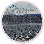 Tidal Wave Of Geese Round Beach Towel