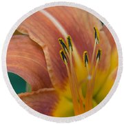Tiger Daylily Round Beach Towel