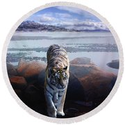 Tiger In A Lake Round Beach Towel