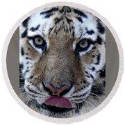 Tiger Lick Round Beach Towel