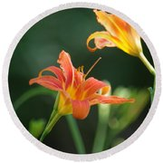 Tiger Lily And Bud   # Round Beach Towel